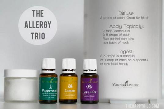 allergytrio